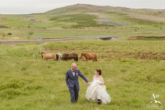 Icelandic Wedding Horses