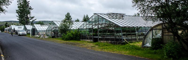 hveragerði greenhouses