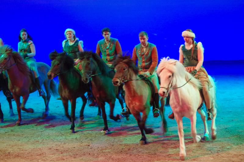 Fakasel: The Icelandic Horse Park