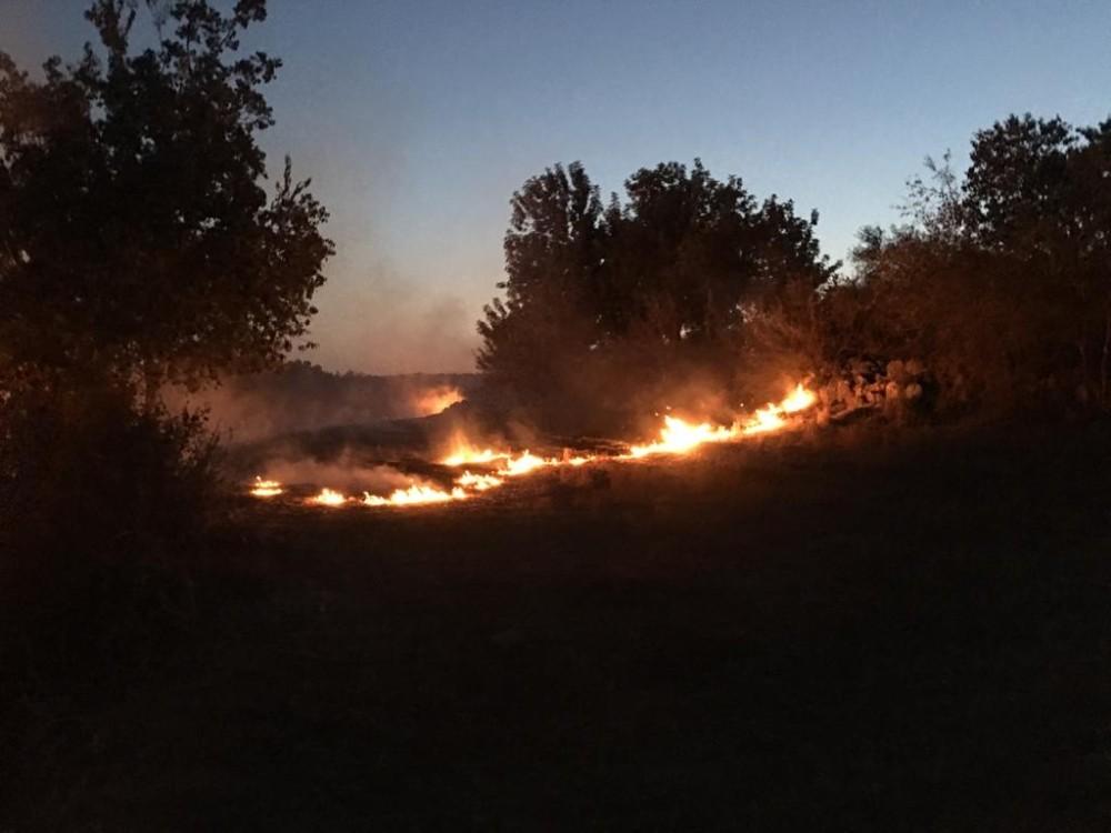 Tarsus'ta çıkan yangın ormana sıçramadan söndürüldü