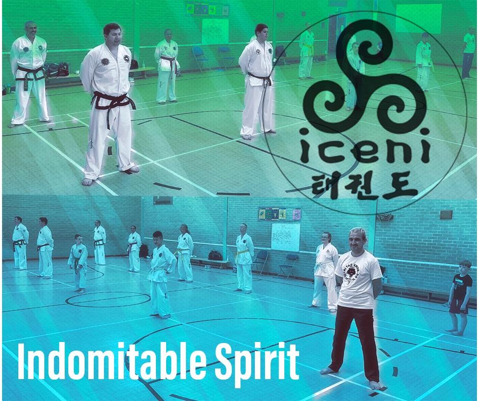 indomitable spirit of Taekwon-do