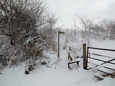 winter in bungay