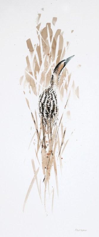 Wildlife Art Exhibition Photo: 'Well Hidden' A Bittern at Island Mere Hide, RSPB Minsmere Reserve