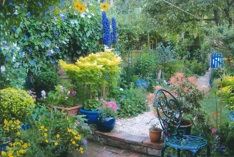 Norfolk Ngs June Open Gardens 2016 Iceni Post News From