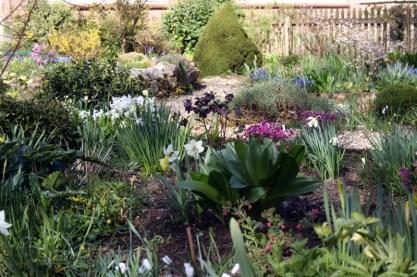 Witton Lane Gardens