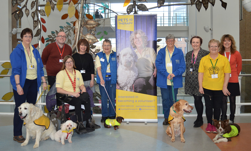 PAT the dogs at NNUH