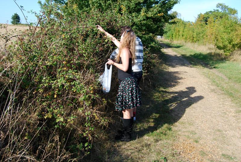 summer-fruit picking waveney valley