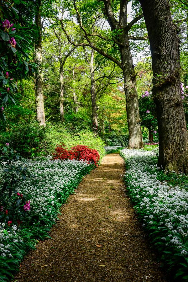 Lexham Hall gardens