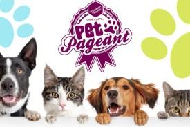 pet pageant