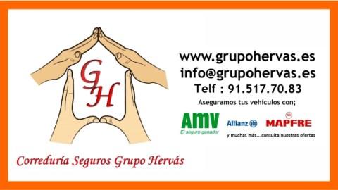 GRUPO HERVAS