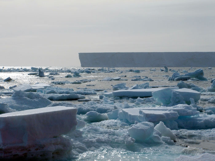 Icebergs  Ice Stories Dispatches From Polar Scientists