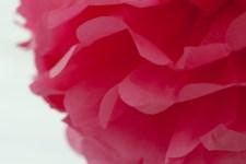 16. Tissue PomPoms