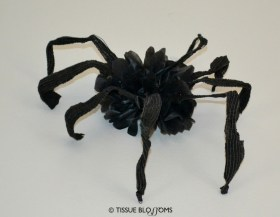 Spider Blossoms