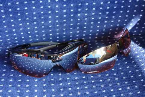 Wenger Sport Glasses 2