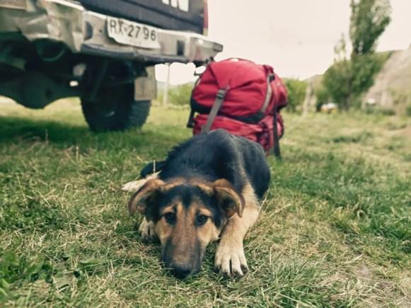 AlpacaStash_2011_01_Gregory_Patagonia_Platinum (40 of 40)