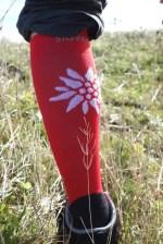 Sigvaris Mountain Socks 1