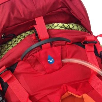 OspreyVariant3706