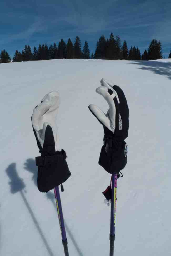 Test Hestra Army Leather Heli Ski 3 Finger Ich Liebe Berge