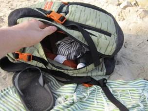 Dakine Jetty Wet Pack 39