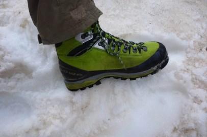 Lowa Mountain Expert GTX Evo 27