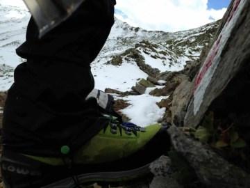 Lowa Mountain Expert GTX Evo 35
