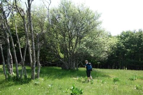 Outdoor Research Zendo Pants 14