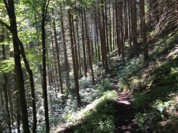Tingle Trail Via Spluga 085