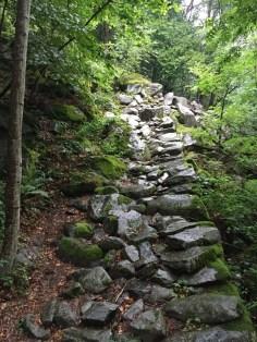 Tingle Trail Via Spluga 174