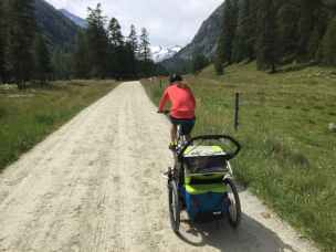 Thule Chariot Sport (40)