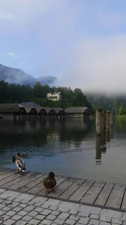 40 Jahre Nationalpark Berchtesgaden 01