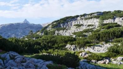 40 Jahre Nationalpark Berchtesgaden 26