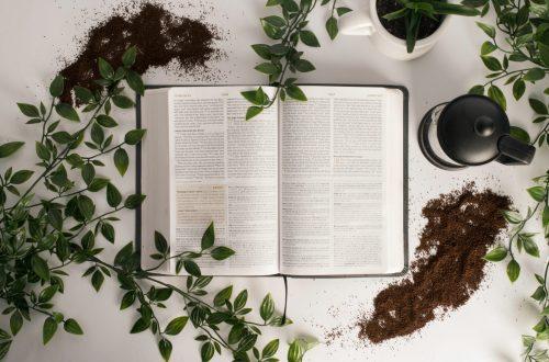 Heilkunde Buch Hildegard von Bingen