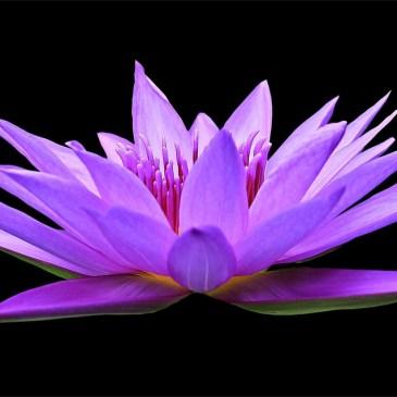Deine effektive 10-Minuten-Entspannungs-Meditation!