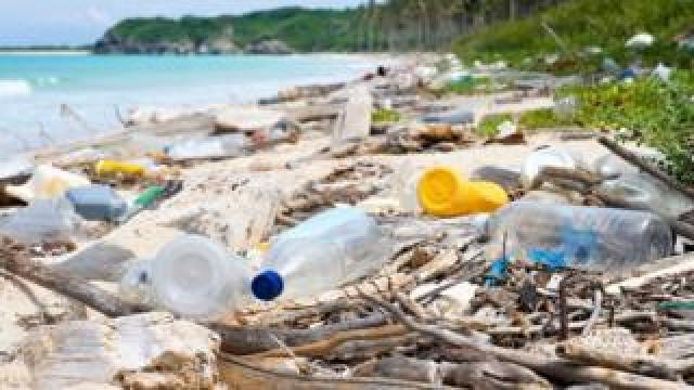 Plastic bottles on a beach