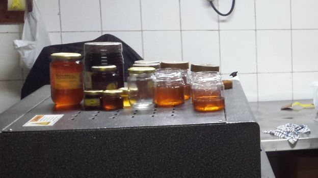 Honey in glass jars in a factory