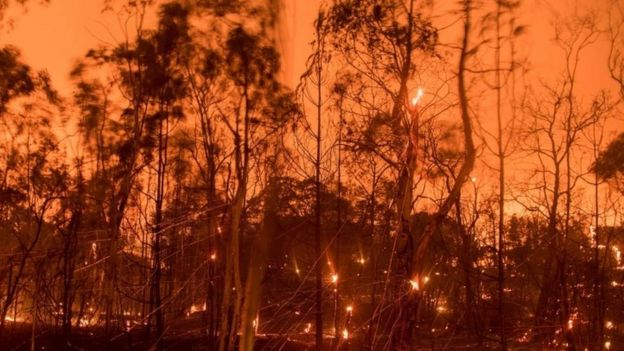 A long exposure photograph shows embers fly off smouldering trees after flames from the