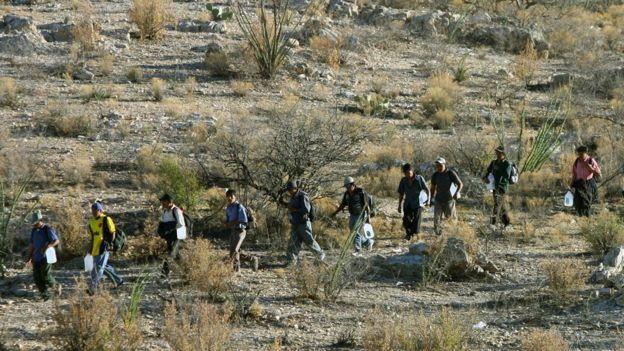 El desierto de Sonora