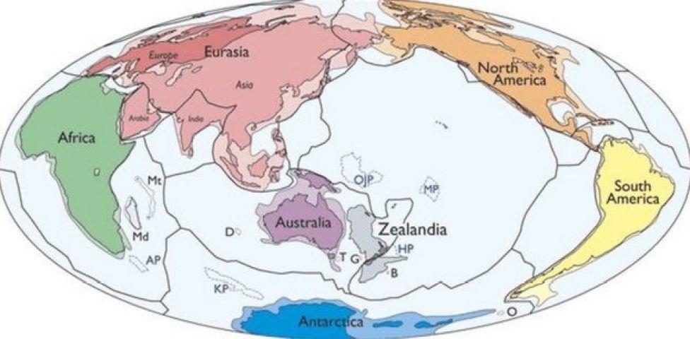 Plan de Zealandia