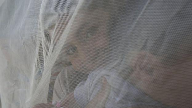 Niños tras una mosquitera
