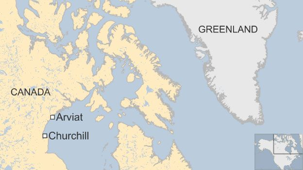 A map showing Arviat, Churchill and Greenland