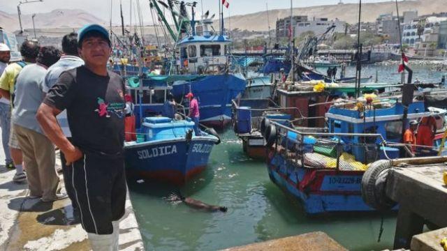 Puerto de Ilo