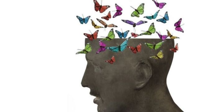 Cabeza con mariposas en el cerebro