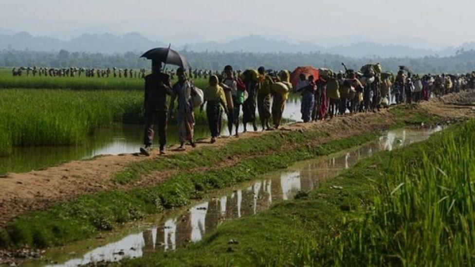 Muslimiinta Rohingya oo ka qaxaya Myanmar kuna sii jeeda xerada qaxootiga ee Balukhali