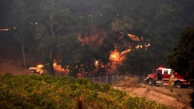 Lính cứu hỏa vật lộn với lửa ở một trang trại trồng nho ở Santa Rosa