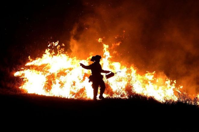 A Fire firefighter uses a drip torch to start a backfire as he battles the Rocky Fire on 3 August 2015 near Clearlake, California