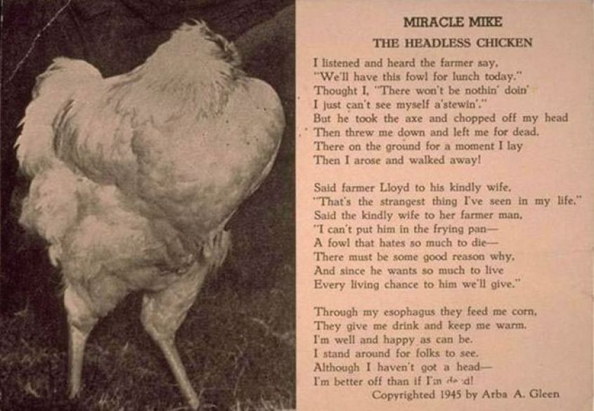 Postcard with poem about Mike