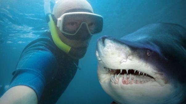Selfie con un tiburón