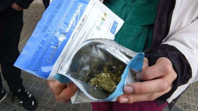 Resultado de imagen para Uruguay: Farmacias Cannabis