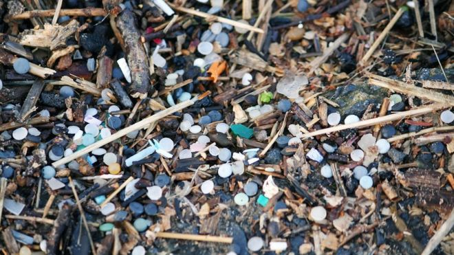 Nurdles on a beach