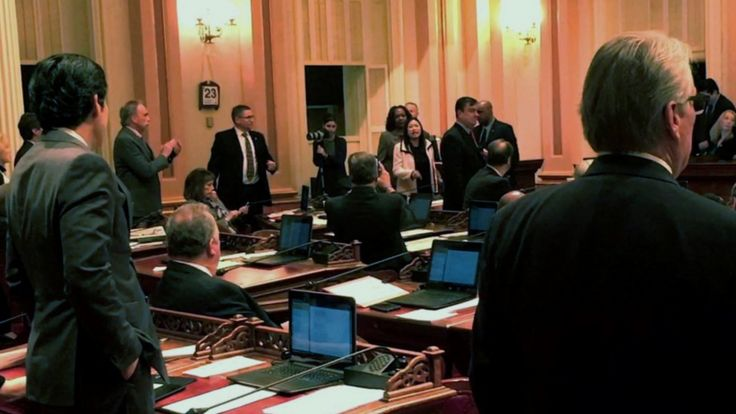 Sen. Janet Nguyen being removed from the senate floor in California